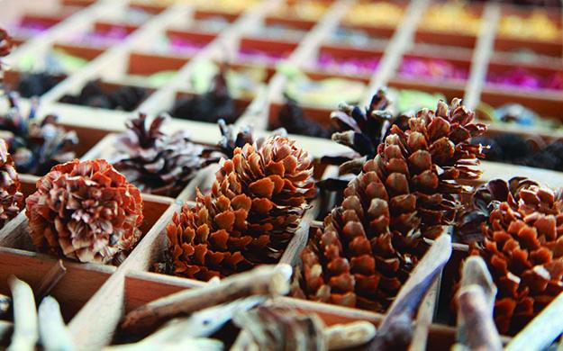 blog cones
